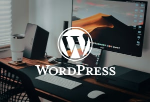 Разработка сайта на WordPress 1